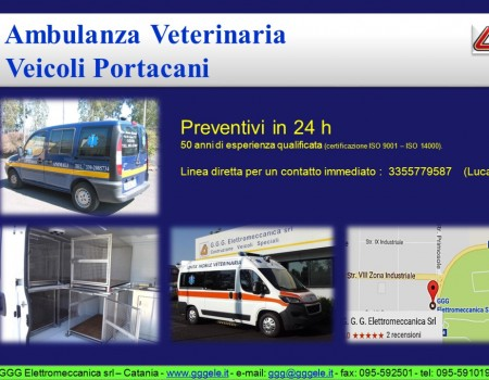 Ambulanze veterinarie – veicoli portacani